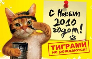 Тиграми становятся ))